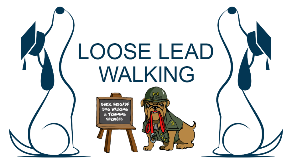 Loose Lead Course